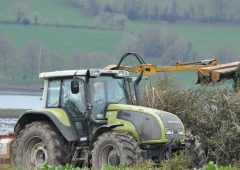 Department issues advice as Hedgerow Week continues