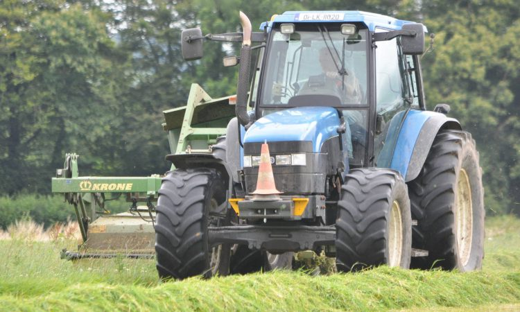 'We could be mowing second cuts in September'