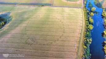 Cropmarks unveil 'prehistoric ritual enclosure' in Co. Meath