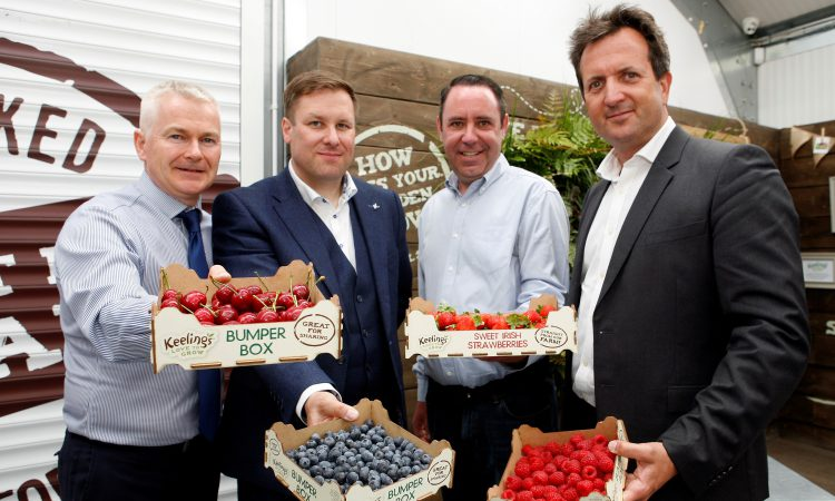 €5.2 million in food contracts unveiled for Longford resort