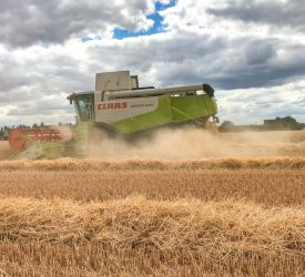 38,000ha committed to Straw Incorporation Measure