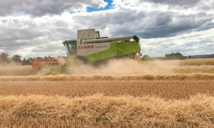 Tillage focus: Coeliacs celebrate as combines roll