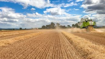 Glanbia sets out plans for grain following discussions