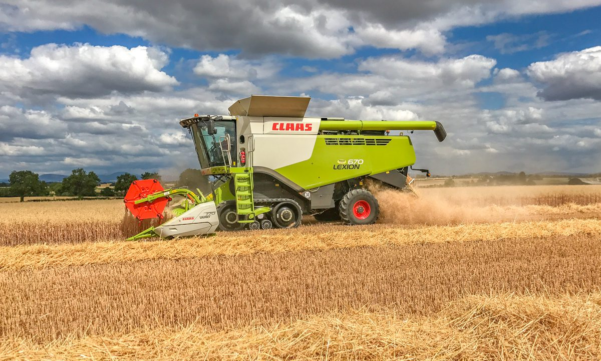 Glanbia to double area of gluten-free oats