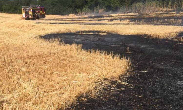 Sparks from combine blade ignites field fire