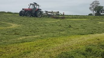 'There is a culture of excess silage waste in Ireland'