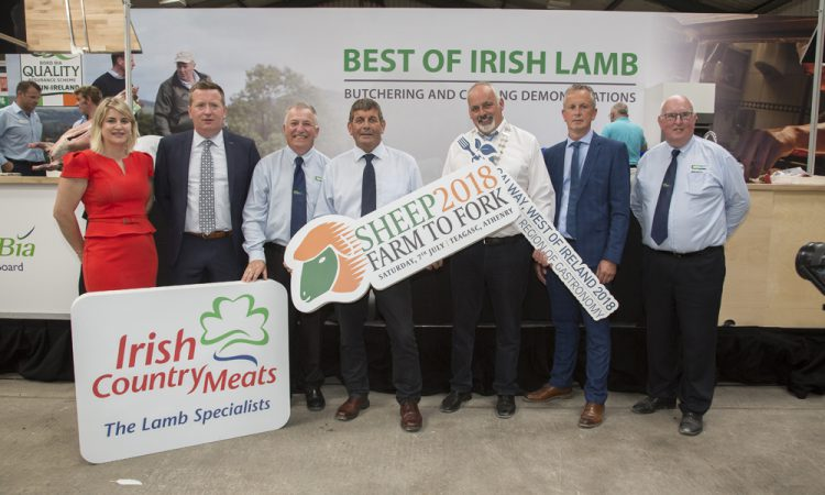 Technology transfer takes top priority at Teagasc SHEEP 2018