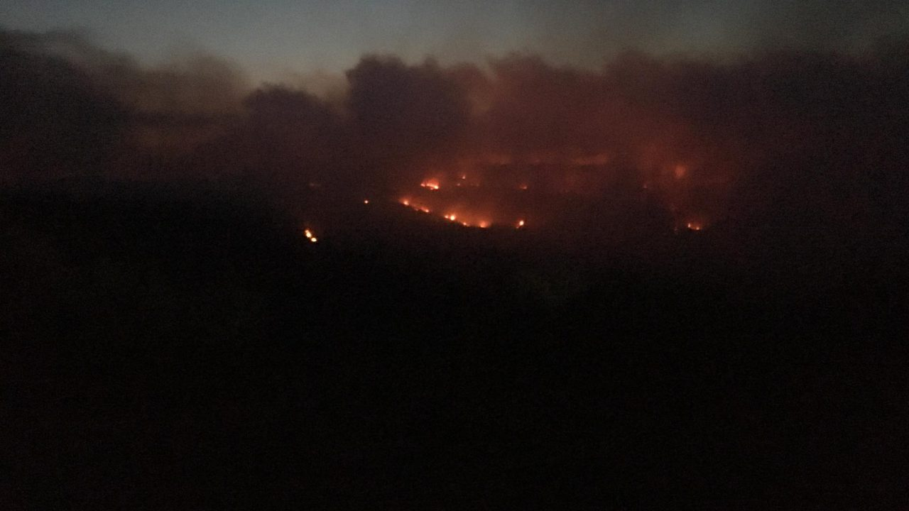 Video: Extensive forest fire rips through midlands mountains