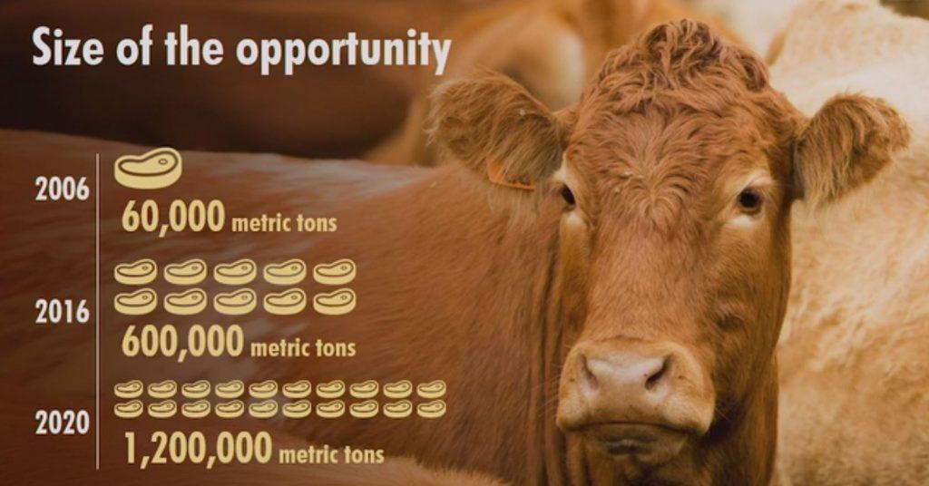 China beef imports
