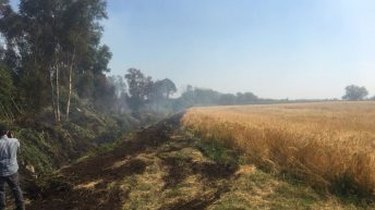 Fire breaks set up to protect 50ac corn field from fire