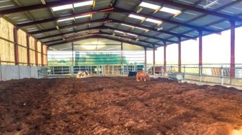 BNM to expand into peat bedding market
