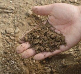 Smart Farming programme: Improving soil fertility saves €25/ha
