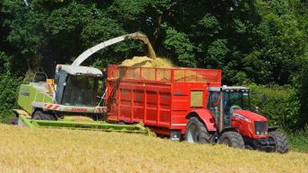 Wholecrop silage: An option for livestock and tillage farmers?