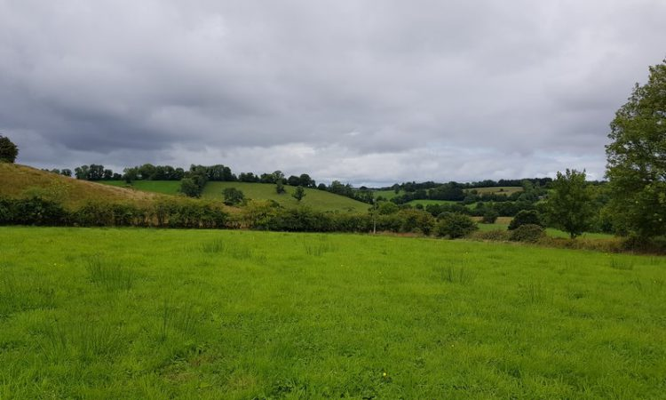 'Choice quality' agricultural land in a convenient roadside location in Breandrum