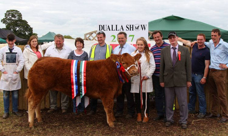 Focus firmly on farm safety at this year's Dualla Show