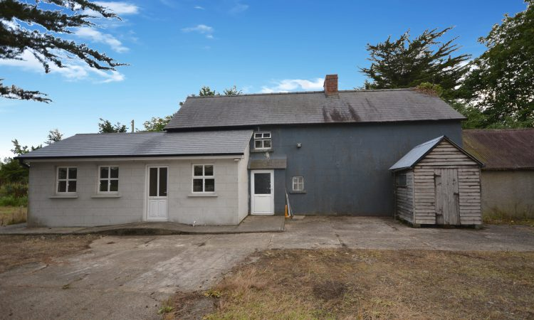 'Valuable' 60.78ac residential holding for sale in Gorey