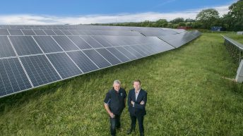 37ac solar farm powering Dale Farm's cheddar cheese plant