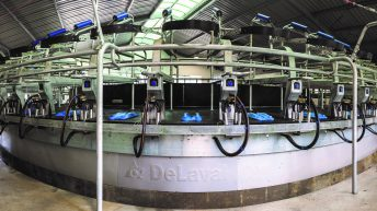 New DeLaval rotary for Irish and UK farmers