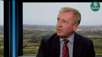 'No farmer can afford to be carrying inefficient cattle' – Minister Creed