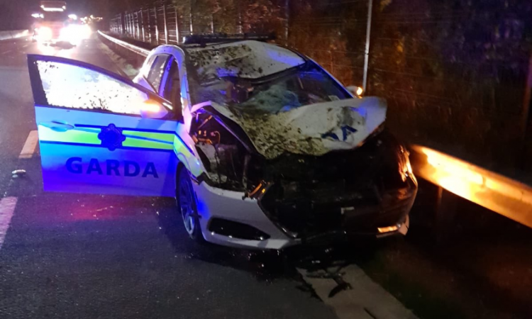 Collision with loose horse leaves 2 Gardai injured