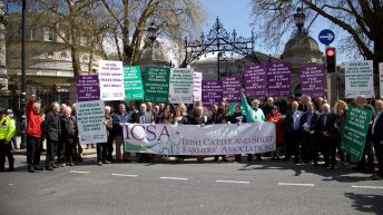 25 years of ICSA to be celebrated on Friday