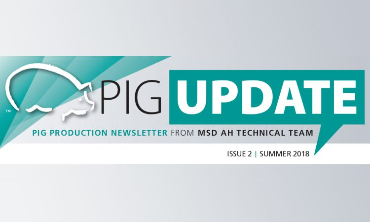 Pig Update available to read online