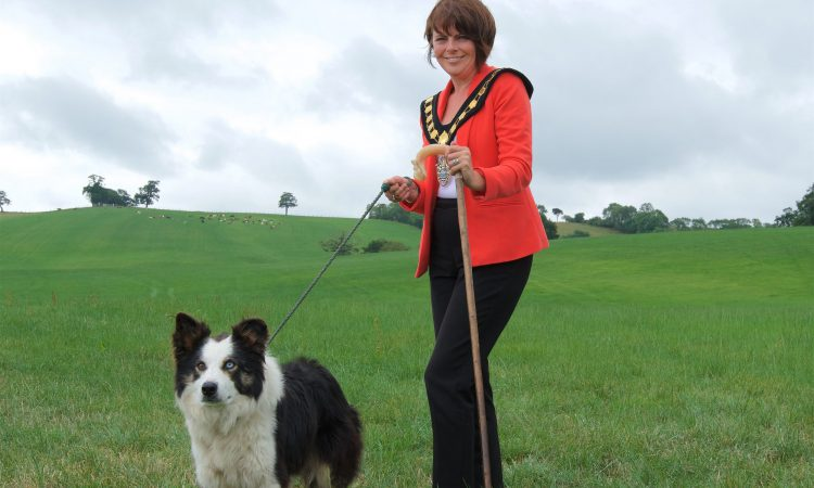 Dromore gears up for International Sheepdog Trial 2018
