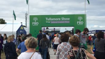 Pics: Crowds flock to Tullamore Show