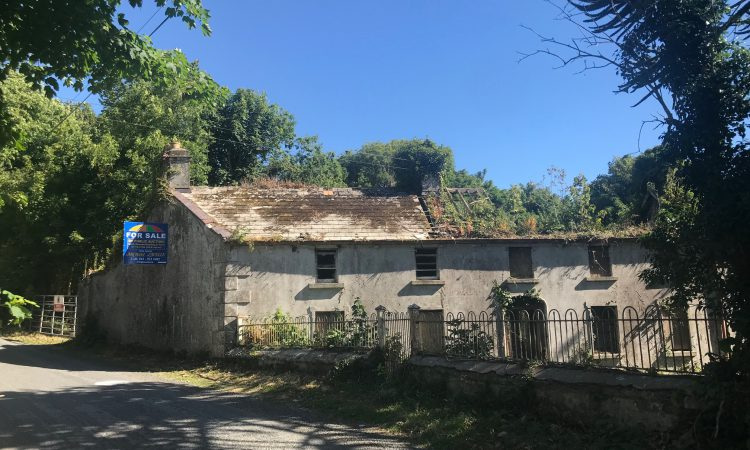 Dundalk holding with derelict house for sale attracts cross-border interest