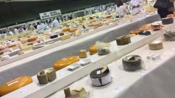 Cream of the crop: Carbery takes home 13 cheese awards