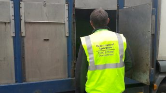 Department launches animal identification investigation in Donegal