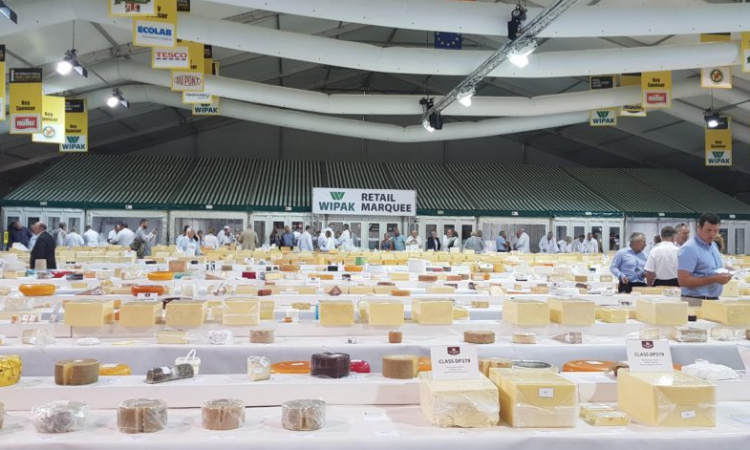 'The big cheese': Dairygold reels in 8 International Cheese accolades