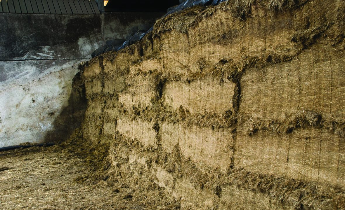 Silage pits – 'Potentially dangerous' heights putting workers at risk say HSA & FCI