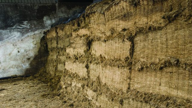 Have you tested your silage quality yet?