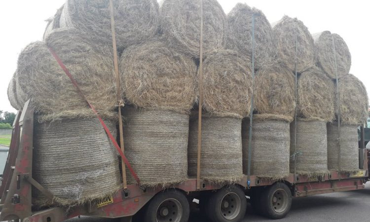 Tractor driver found to be using 'incorrect straps' while transporting bales