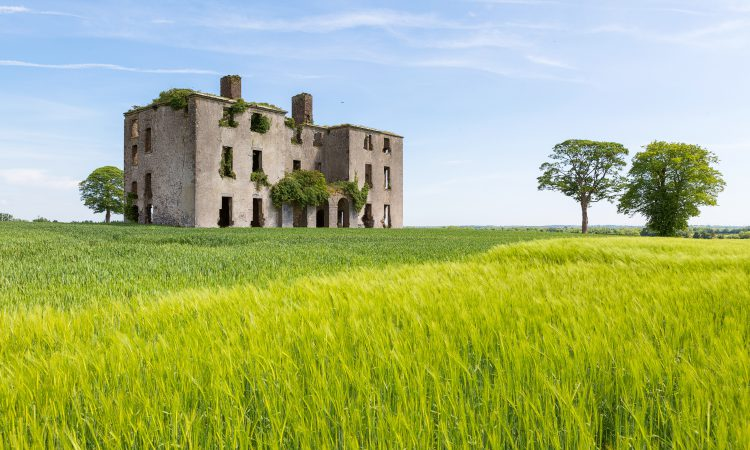 Rathcoffey castle and farm offers 'highly productive' lands