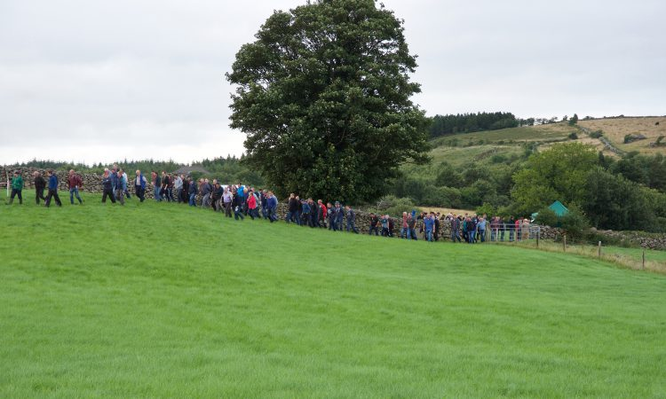 Tipperary farm to host Bord Bia and Teagasc KT Farm Walk