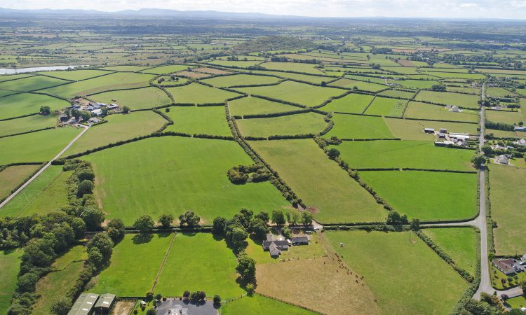67ac 'high-quality agricultural land' for sale at Croom