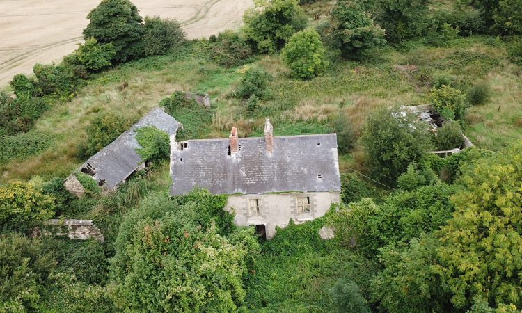 'Well-located' 39ac with derelict house for sale at Oulart