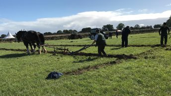 Ploughing competitions draw to a close…here's a look back
