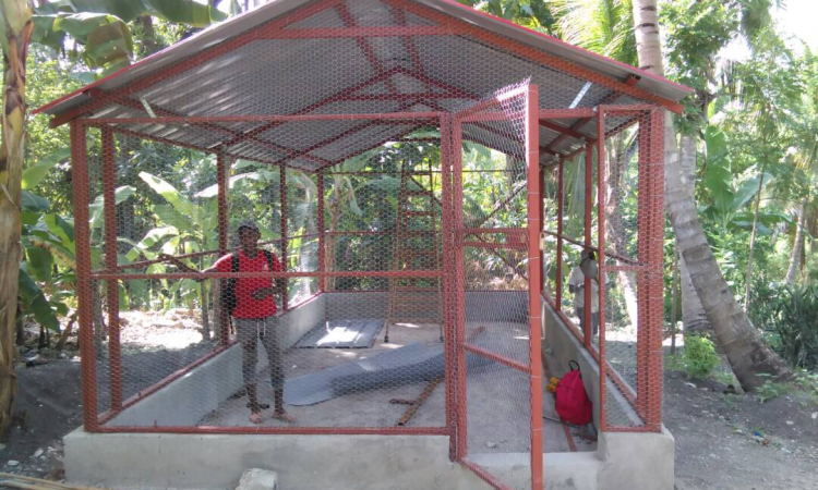 Manor Farm travels to Haiti to build chicken coops for charity