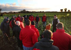 Young farmer discussion groups 'the backbone' of agri affairs
