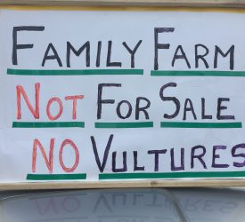 IFA: 'Vulture funds have no understanding of family farm'