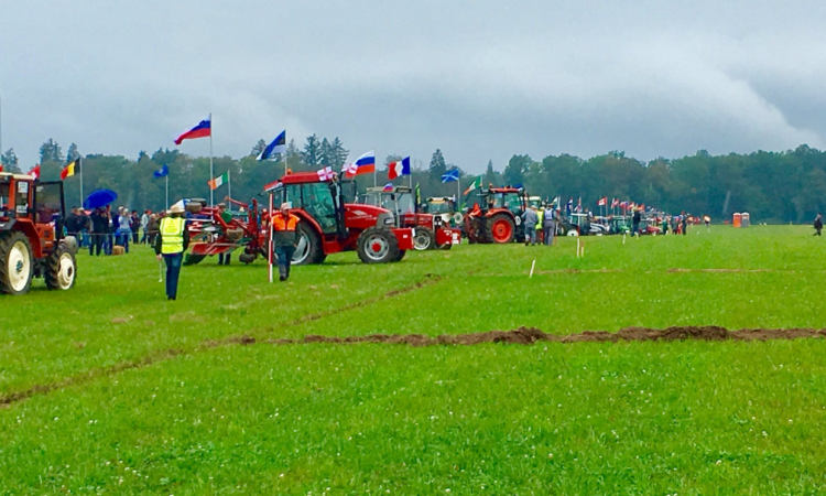 Irish ploughmen take top spots in world championships
