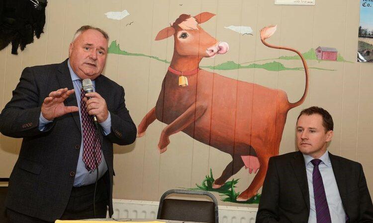 Fianna Fail's McConalogue addresses 'farm income crisis' at Elphin Mart