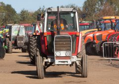 Auction report: Buying a Massey on a not-so-massive budget