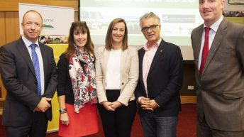 'Promising perspectives' for on-farm tourism business