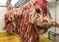 Beef trade: Farmers in a better negotiating position this week