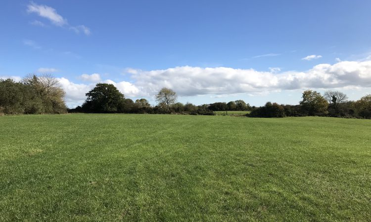 68ac non-residential holding in Tomsilla, Gorey
