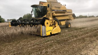 Tillage focus: Spring oilseed rape seed is providing a niche crop for tillage farmers